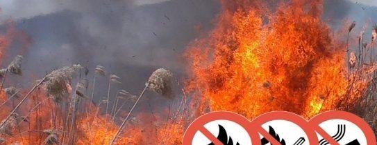 Védjük a természetet a tüzektől!