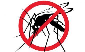 """""""Usmernenie – kalamitný výskyt komárov"""""""