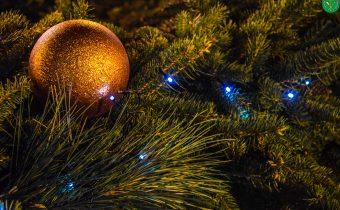 Vianočná atmosféra v Topoľníkoch